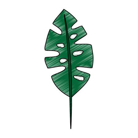 tropical leaf icon image vector illustration design Illustration