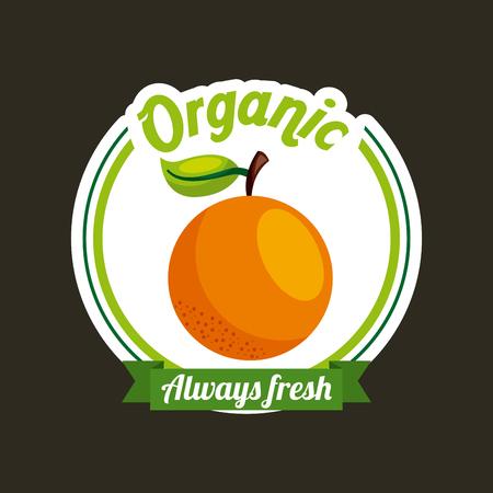 orange fresh organic food emblem image vector illustration design