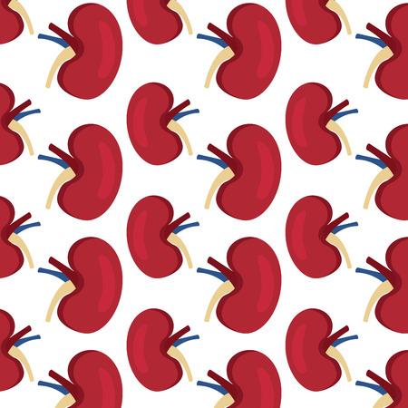wallpaper with human kidney organs medical vector illustration Ilustracja