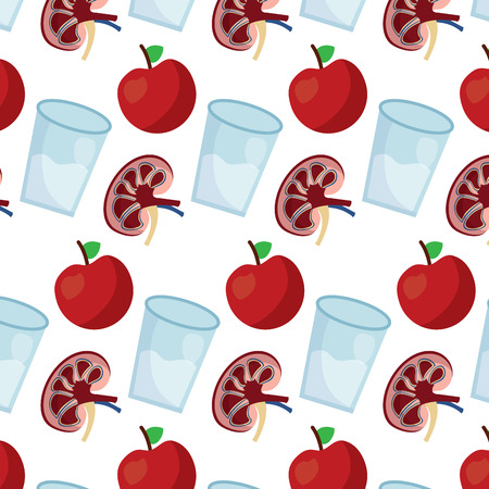 human kidney with water glass and apple fruit wallpaper decoration vector illustration