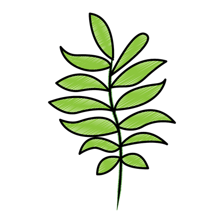 tree branch with green leaves plant natural vector illustration drawing design