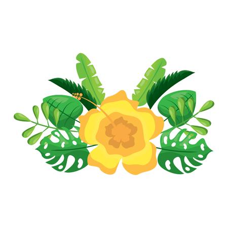flower natural decoration arrangement leaves vector illustration Ilustração