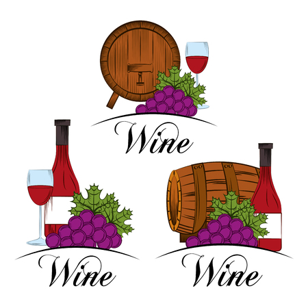 Wine collection beverage liquor grape bottle and barrel vector illustration.