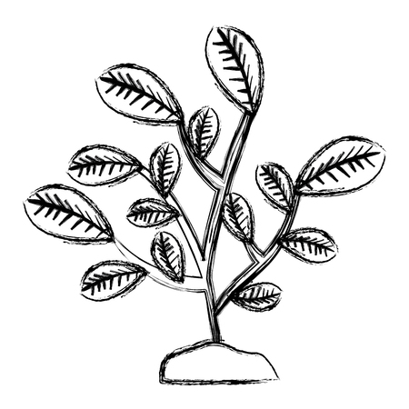 leafs plant natural icon vector illustration design Illustration