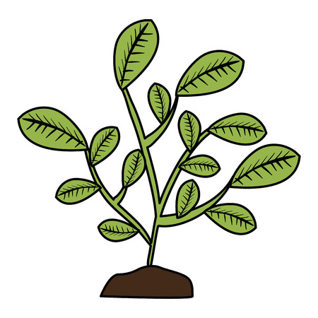 leafs plant natural icon vector illustration design Stock Illustratie