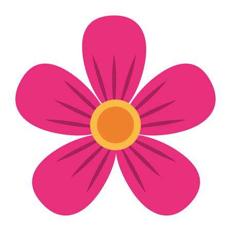 pink flower decoration ornament natural vector illustration Illustration