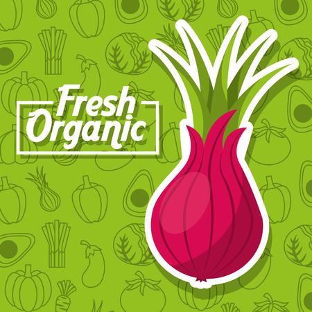 Nutrition fresh organic beet vegetables background vector illustration