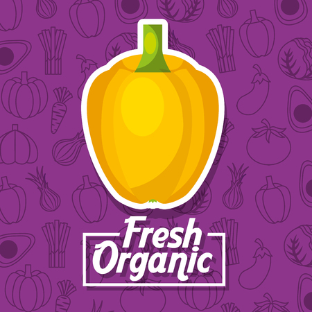 Yellow bell pepper fresh organic vegetables background vector illustration Banque d'images - 96805629
