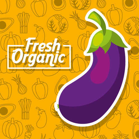 Fresh organic eggplant vegetables background vector illustration