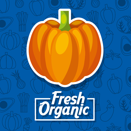Pumpkin fresh organic food vegetables background vector illustration 스톡 콘텐츠 - 96806340