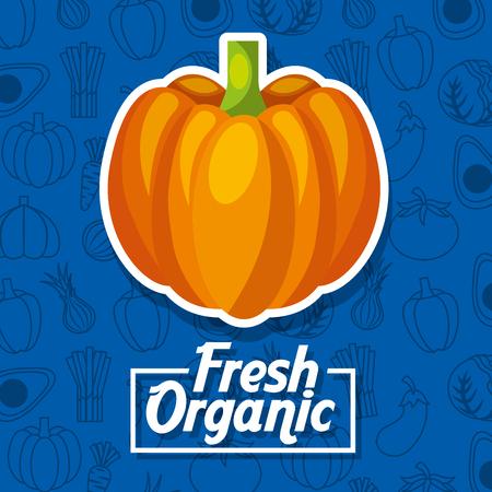 Pumpkin fresh organic food vegetables background vector illustration