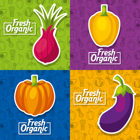 Vegetables fresh organic set pumpkin beet bell pepper and eggplant vector illustration.  イラスト・ベクター素材