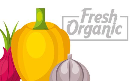 Vegetables bell pepper beetroot garlic fresh organic healthy banner vector illustration.  イラスト・ベクター素材