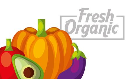 Vegetables pumpkin avocado eggplant red bell pepper fresh organic healthy banner vector illustration Banque d'images - 96806341