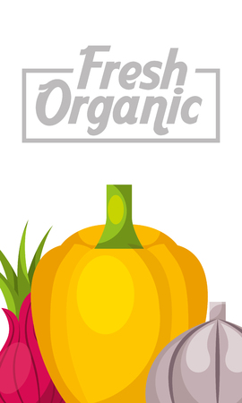 vegetables fresh organic bell pepper beet and garlic vertical banner vector illustration Illustration