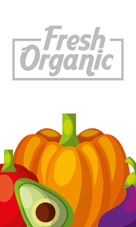 Vegetables fresh organic pumpkin avocado eggplant vertical banner vector illustration