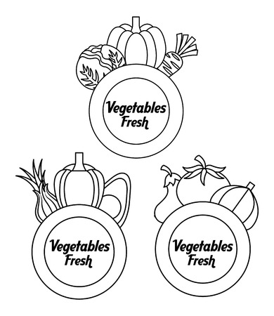 outline vegetables fresh beet pumpkin lettuce tomato labels vector illustration