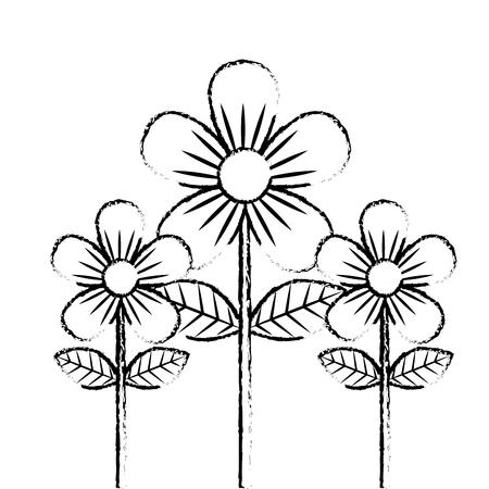 beauty flowers decoration leaves stem petals vector illustration sketch design Stock Illustratie
