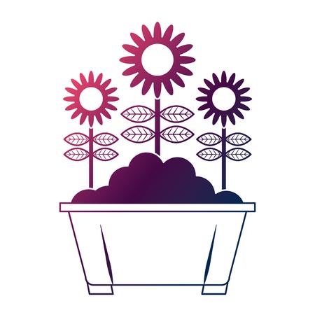 potted flowers natural decoration leaves plant vector illustration degrade color design