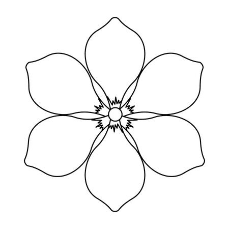 frangipani flower natural bloom decoration ornament vector illustration outline image Vettoriali