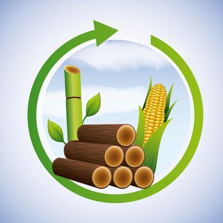 エネルギークリーンサトウキビとトウモロコシエタノールベクターイラスト  イラスト・ベクター素材