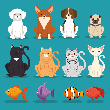 dogs cats and fish pets characters vector illustration design