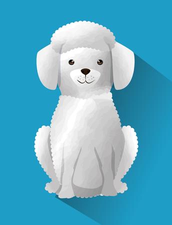 cute French poodle dog vector illustration design