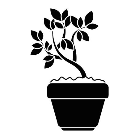 Prachtige bonsai kamerplant in pot vector illustratie ontwerp Stockfoto - 97047201