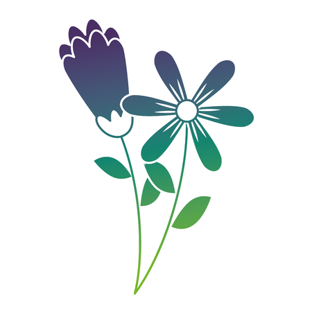 two flowers decorative spring image vector illustration gradient color design