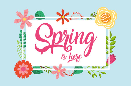 spring is here note lettering flowers frame decoration vector illustration