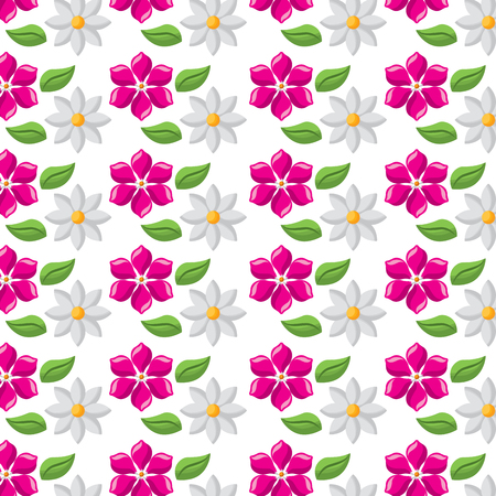 decorative delicate floral jasmine and frangipani flower wallpaper vector illustration