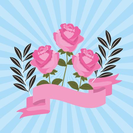 pink roses flower leaves ribbon decoration vector illustration