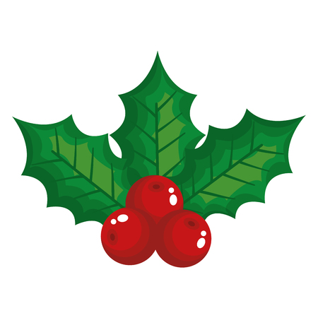 leafs and seeds christmas decoration vector illustration design Ilustração