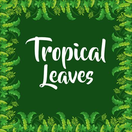 Tropical leaves border decoration on green background vector illustration Illustration