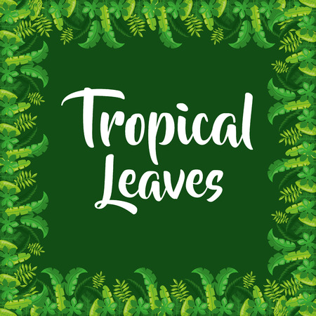 Tropical leaves border decoration on green background vector illustration Ilustração