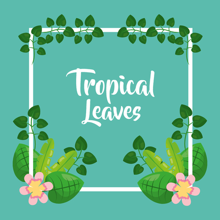 tropical leaves flower leaves decorative frame decoration vector illustration Illustration