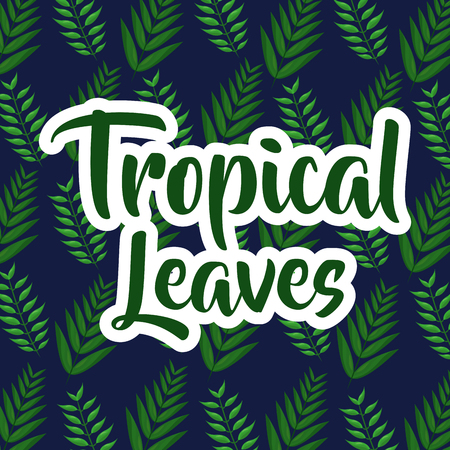 tropical leaves typography and branch palms background decoration vector illustration