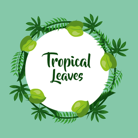 tropical leaves decoration natural badge vector illustration