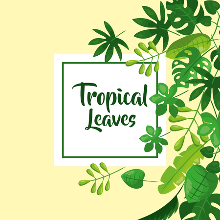 tropical leaves natural foliage decoration vector illustration