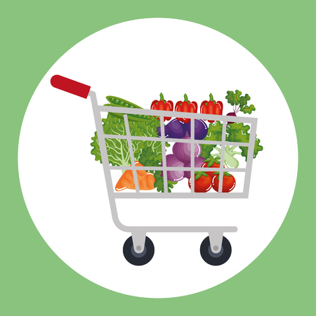 supermarket shopping cart with groceries vector illustration design Stock Vector - 97385340