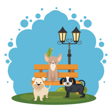 cute dogs in the park scene vector illustration design
