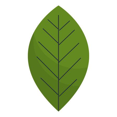 Leafs plante écologie icône illustration vectorielle conception Banque d'images - 97510465