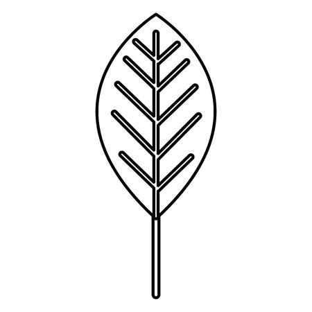 Leaf plant ecology icon illustration design Banque d'images - 97550404