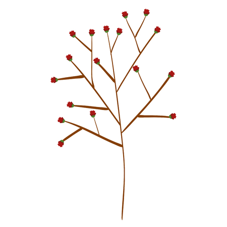tree branch with seeds vector illustration design Illustration