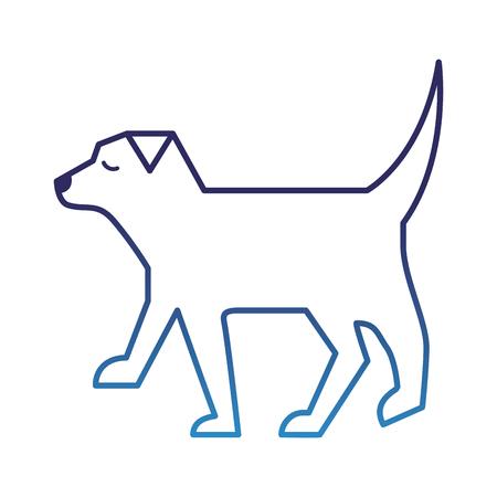 pet dog animal domestic image vector illustration degraded blue