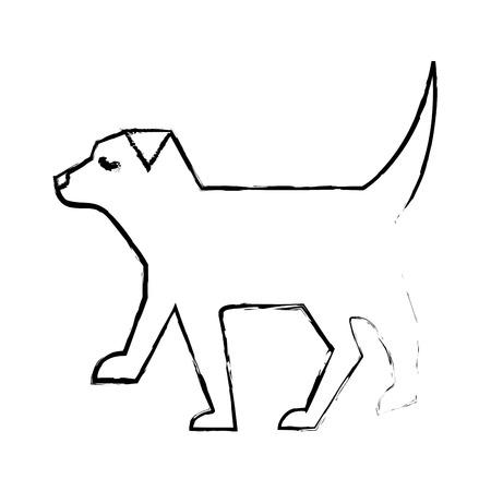 pet dog animal domestic image vector illustration sketch design