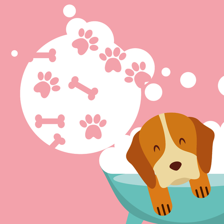dog in bath grooming bubbles paw bone love pet domestic vector illustration Ilustração