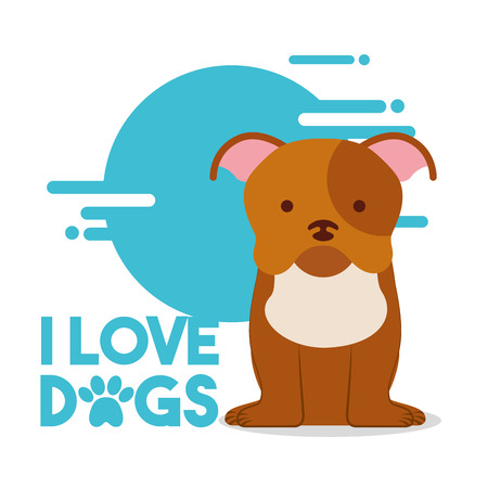 love dog sitting pet domestic animal vector illustration