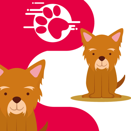 cute pair dogs sitting and paw print vector illustration