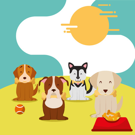 many dogs in the field with toy ball and bowl food vector illustration